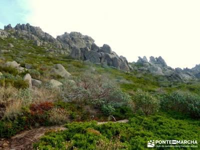 Sur Maliciosa - El Peñotillo; sierra guadarrama, madrid, reto senderismo